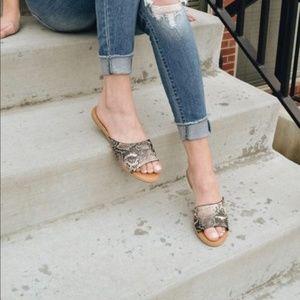 Shoes - 💕STUNNING SNAKE PRINT SLIDES FLATS- Shoe